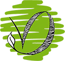Vert Design | Concepteur Paysagiste